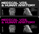 Medical Visualisation & Human Anatomy