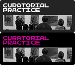 Curatorial Practice (Contemporary Art)